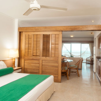 Habitacion Junior Suite